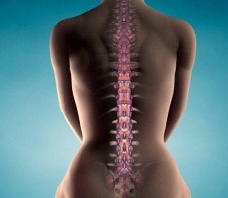 Операции на спине в Израиле